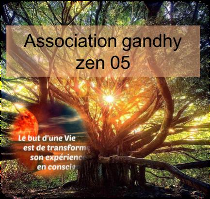 Association Gandhy Zen 05